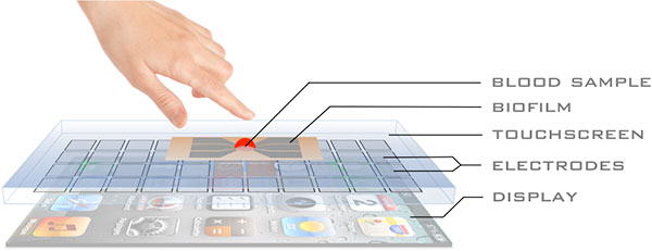 smartphone-screen-sensor