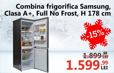 Combină frigorifică Samsung RB29FERNDSA