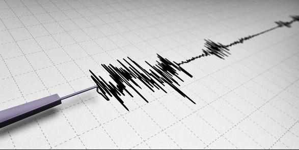 cutremur-de-7-3-grade-richter-in-japonia